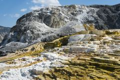 Free Mammoth Hot Springs Terrace Geysers, Yellowstone Royalty Free Stock Image - 100610726
