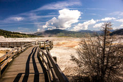 Mammoth Hot Springs terrace Stock Photography