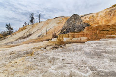 Mammoth Hot Springs. The terraces at Mammoth hot springs form around a large rock in Yellowstone National Park, Wyoming, USA Stock Image