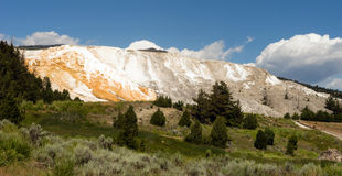 Mammoth Hot Springs Terraces Yellowstone National Park Royalty Free Stock Photography