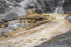 Mammoth Hot Springs Terraces Stock Image