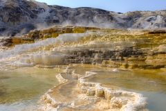 Mammoth Hot Springs Terraces, Yellowstone National Park. Mammoth Hot Springs Terraces in Yellowstone National Park, Wyoming stock images