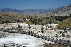 Mammoth Hot Springs terrass, Yellowstone nationalpark Fotografering för Bildbyråer