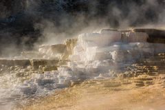 Mammoth hot springs travertine terraces in Yellowstone National Park Stock Images
