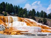 Terassenförmig angelegter Kalkstein bei Mammoth Hot Springs Stockbild