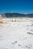 Mammoth Hot Springs White sulfuric rock field in Yellowstone Royalty Free Stock Photos