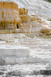 Mammoth Hot Springs in Yellowstone Royalty Free Stock Images