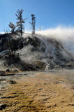 Mammoth Hot Springs yellowstone Royaltyfri Fotografi