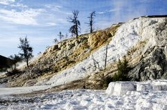 Mammoth Hot Springs in Yellowstone Royalty Free Stock Image