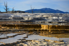 Mammoth Hot Springs in Yellowstone Royalty Free Stock Photos