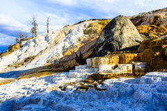 Mammoth Hot Springs Yellowstone Stock Images