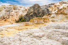 Mammoth Hot Springs in Yellowstone N.P. Royalty Free Stock Photo