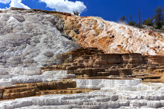 Mammoth Hot Springs,Yellowstone National Park. Mammoth Hot Springs in the northwest corner of the Yellowstone National Park, Terrace Mountain at Mammoth Hot royalty free stock photography