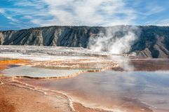 Mammoth Hot Springs Yellowstone National Park Royalty Free Stock Photography