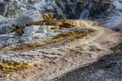 Mammoth hot springs in Yellowstone national park Royalty Free Stock Images