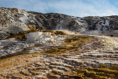 Mammoth hot springs in Yellowstone national park Royalty Free Stock Photos