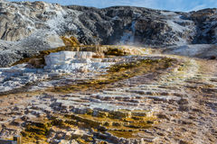 Mammoth hot springs in Yellowstone national park Stock Image