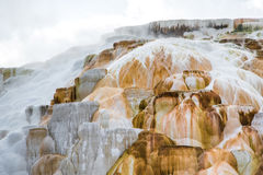 Mammoth hot springs - Yellowstone National Park Stock Photography