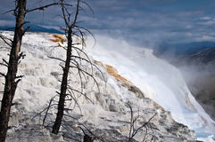 Mammoth hot springs, Yellowstone National Park Stock Images