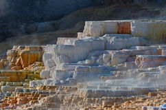 Mammoth Hot Springs in Yellowstone National Park. USA Stock Photos