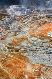 Mammoth Hot Springs in Yellowstone National Park. USA Royalty Free Stock Photos