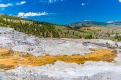 Mammoth Hot Springs, Yellowstone Nationalpark Lizenzfreie Stockfotografie