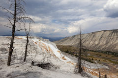 Mammoth Hot Springs, Yellowstone NP Fotografie Stock