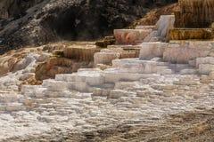 Mammoth Hot Springs Stock Image