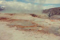 Mammoth Hot Springs Stock Photo