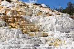 Mammoth Hot Springs Yellowstone Park Lizenzfreie Stockfotografie