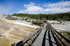 Mammoth Hot Springs in Yellowstone Royalty Free Stock Photography