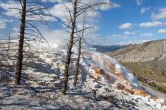 Mammoth Hot Springs, Yellowstone, Wyoming, los E.E.U.U. Fotografía de archivo