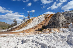 Mammoth Hot Springs, Yellowstone, Wyoming, U.S.A. Immagine Stock Libera da Diritti