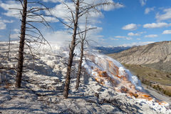 Mammoth Hot Springs, Yellowstone, Wyoming, U.S.A. Fotografia Stock