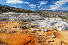 Mammoth Hot Springs Yellowstone, Wyoming, USA Royaltyfria Bilder