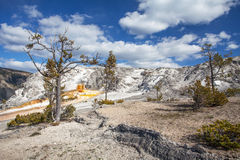 Mammoth Hot Springs, Yellowstone, Wyoming, USA Stockfoto