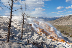 Mammoth Hot Springs, Yellowstone, Wyoming, USA Stock Photos