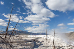 Mammoth Hot Springs, Yellowstone, Wyoming, USA Stock Photography