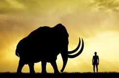 Mammoth and man at sunset Royalty Free Stock Photography