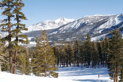 Mammoth Mountain Arkivfoton