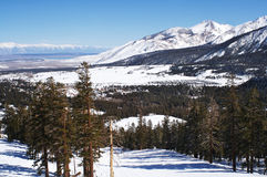 Mammoth Mountain. The view from a lift at Mammoth Mountain, CA Stock Images