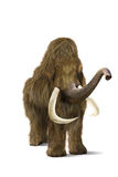 Mammoth. Photo Mammoth on a white background Royalty Free Stock Photography