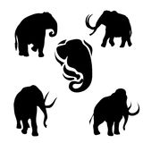 Mammoth set vector. Mammoth set of black silhouettes. Icons and illustrations of animals. Wild animals pattern vector illustration
