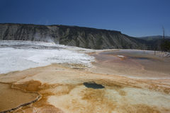 Mammoth Springs Stock Images