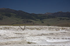 Mammoth Springs Royalty Free Stock Photos