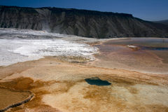 Mammoth Springs Royalty Free Stock Photography