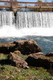 Mammoth springs Royalty Free Stock Images