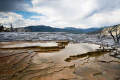 Mammoth Springs. National Park royalty free stock photography