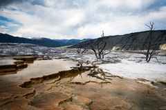 Mammoth Springs. National Park royalty free stock photos