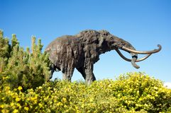 Mammoth statue. Woolly mammoth statue at Mammoth Mountain, California Royalty Free Stock Images